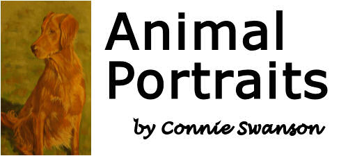 Connie Swanson Animal Portraits